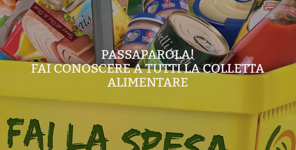 colletta-alimentare-2015-a